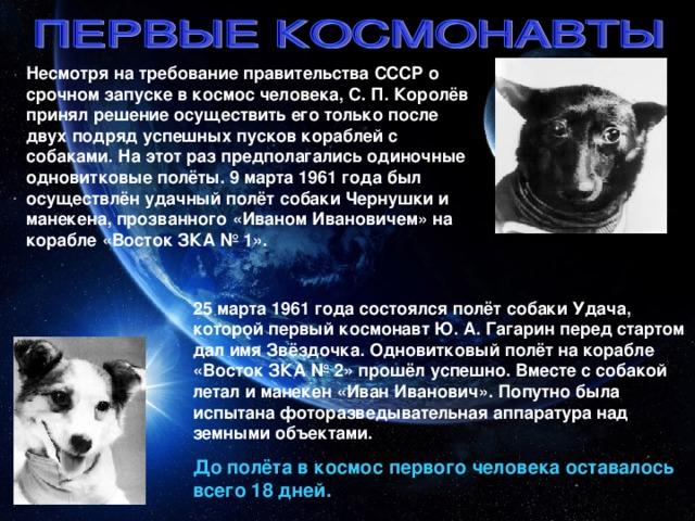 Несмотря на требование правительства СССР о срочном запуске в космос человека, С. П. Королёв принял решение осуществить его только после двух подряд успешных пусков кораблей с собаками. На этот раз предполагались одиночные одновитковые полёты. 9 марта 1961 года был осуществлён удачный полёт собаки Чернушки и манекена, прозванного «Иваном Ивановичем» на корабле «Восток ЗКА № 1». 25 марта 1961 года состоялся полёт собаки Удача, которой первый космонавт Ю. А. Гагарин перед стартом дал имя Звёздочка. Одновитковый полёт на корабле «Восток ЗКА № 2» прошёл успешно. Вместе с собакой летал и манекен «Иван Иванович». Попутно была испытана фоторазведывательная аппаратура над земными объектами. До полёта в космос первого человека оставалось всего 18 дней.