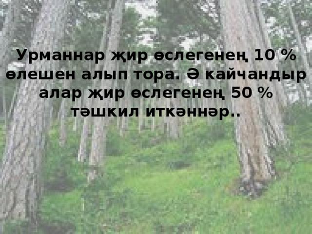 Урманнар җир өслегенең 10 % өлешен алып тора. Ә кайчандыр алар җир өслегенең 50 % тәшкил иткәннәр..