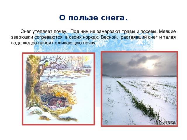 О пользе снега.  Снег утепляет почву. Под ним не замерзают травы и посевы. Мелкие зверюшки согреваются в своих норках. Весной, растаявший снег и талая вода щедро напоят оживающую почву.