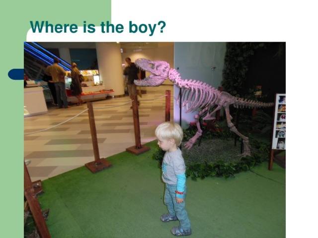 Where is the boy?