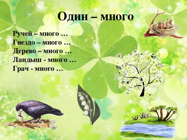 Один – много Ручей – много … Гнездо – много … Дерево – много … Ландыш - много … Грач - много …