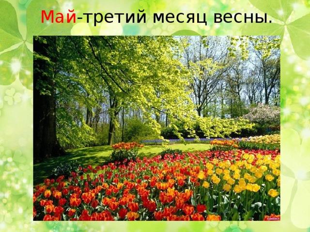 Май -третий месяц весны.
