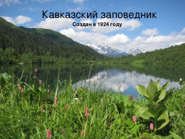 Кавказский заповедник Создан в 1924 году