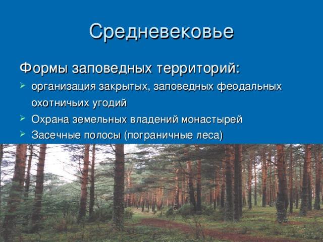 организация закрытых, заповедных феодальных охотничьих угодий Охрана земельных владений монастырей Засечные полосы (пограничные леса)