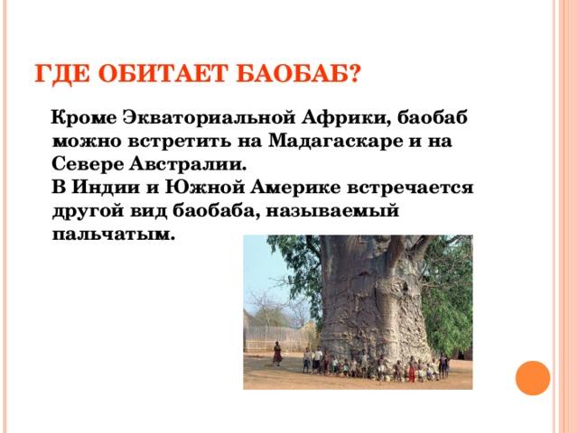 ГДЕ ОБИТАЕТ БАОБАБ?  Кроме Экваториальной Африки, баобаб можно встретить на Мадагаскаре и на  Севере Австралии.  В Индии и Южной Америке встречается другой вид баобаба, называемый пальчатым.