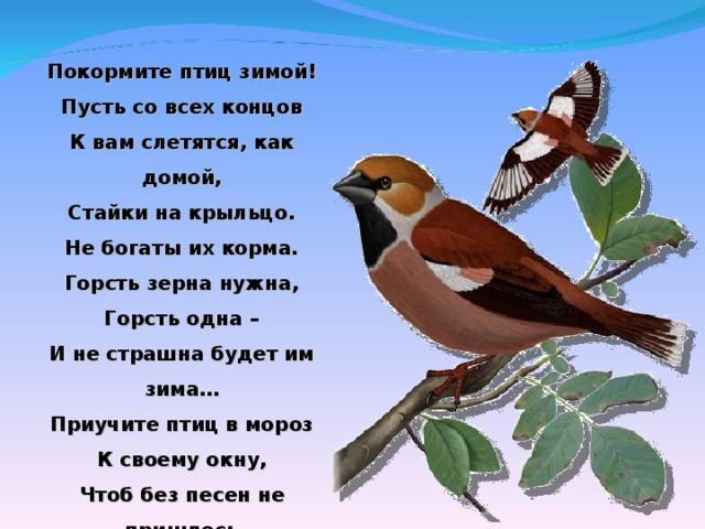 Покормите птиц зимой! Пусть со всех концов К вам слетятся, как домой, Стайки на крыльцо. Не богаты их корма. Горсть зерна нужна, Горсть одна – И не страшна будет им зима… Приучите птиц в мороз К своему окну, Чтоб без песен не пришлось Вам встречать весну.