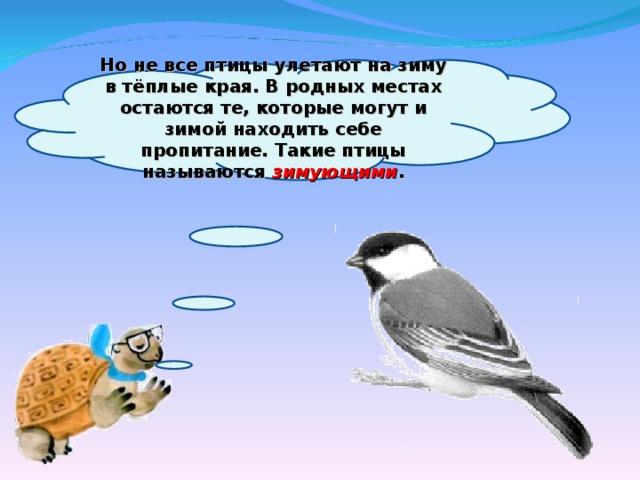 Но не все птицы улетают на зиму в тёплые края. В родных местах остаются те, которые могут и зимой находить себе пропитание. Такие птицы называются зимующими .