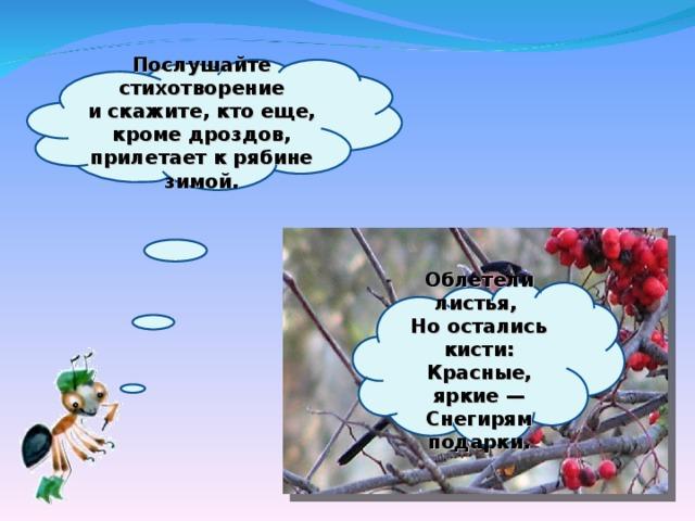 Послушайте стихотворение искажите, кто еще, кроме дроздов, прилетает крябине зимой.     Облетели листья,  Ноостались кисти:  Красные, яркие—  Снегирям подарки.