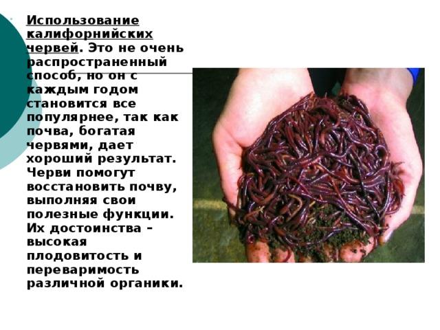 Использование калифорнийских червей . Это не очень распространенный способ, но он с каждым годом становится все популярнее, так как почва, богатая червями, дает хороший результат. Черви помогут восстановить почву, выполняя свои полезные функции. Их достоинства – высокая плодовитость и переваримость различной органики. Использование калифорнийских червей