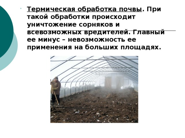 Термическая обработка почвы . При такой обработки происходит уничтожение сорняков и всевозможных вредителей. Главный ее минус – невозможность ее применения на больших площадях. Термическая обработка почвы