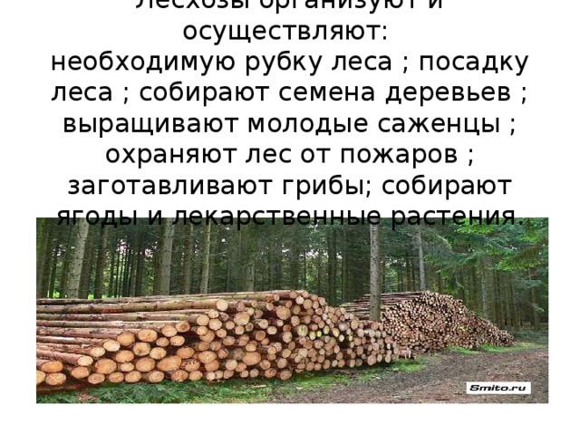 Лесхозы организуют и осуществляют:  необходимую рубку леса ; посадку леса ; собирают семена деревьев ; выращивают молодые саженцы ; охраняют лес от пожаров ; заготавливают грибы; собирают ягоды и лекарственные растения.