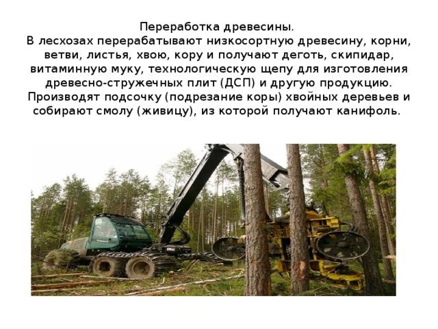 Переработка древесины.  В лесхозах перерабатывают низкосортнуюдревесину, корни, ветви, листья, хвою, кору и получают деготь, скипидар, витаминную муку, технологическую щепу для изготовления древесно-стружечных плит (ДСП) и другую продукцию. Производят подсочку (подрезание коры) хвойных деревьев и собирают смолу (живицу), из которой получают канифоль.