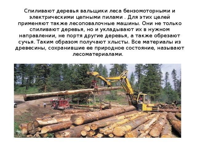 Спиливают деревья вальщики леса бензомоторными и электрическими цепными пилами . Для этих целей применяют также лесоповалочные машины. Они не только спиливают деревья, но и укладывают их в нужном направлении, не портя другие деревья, а также обрезают сучья. Таким образом получают хлысты. Все материалы из древесины, сохранившие ее природное состояние, называют лесоматериалами.