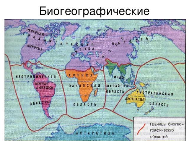 Биогеографические